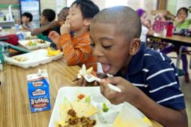 Boy eating school lunch.